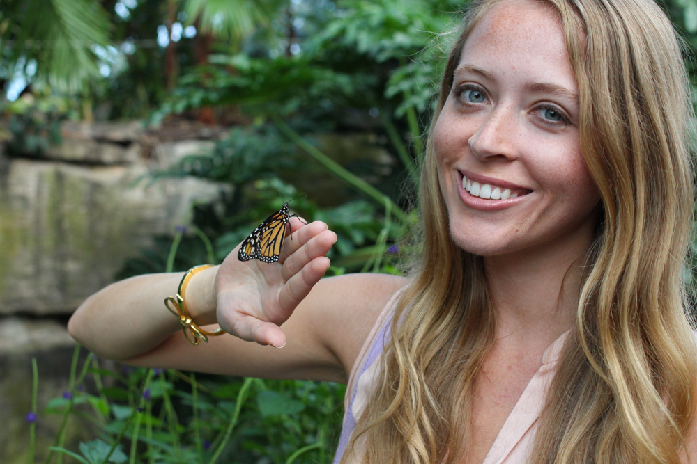butterfly conservatory niagara