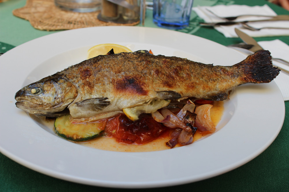 czech baked trout