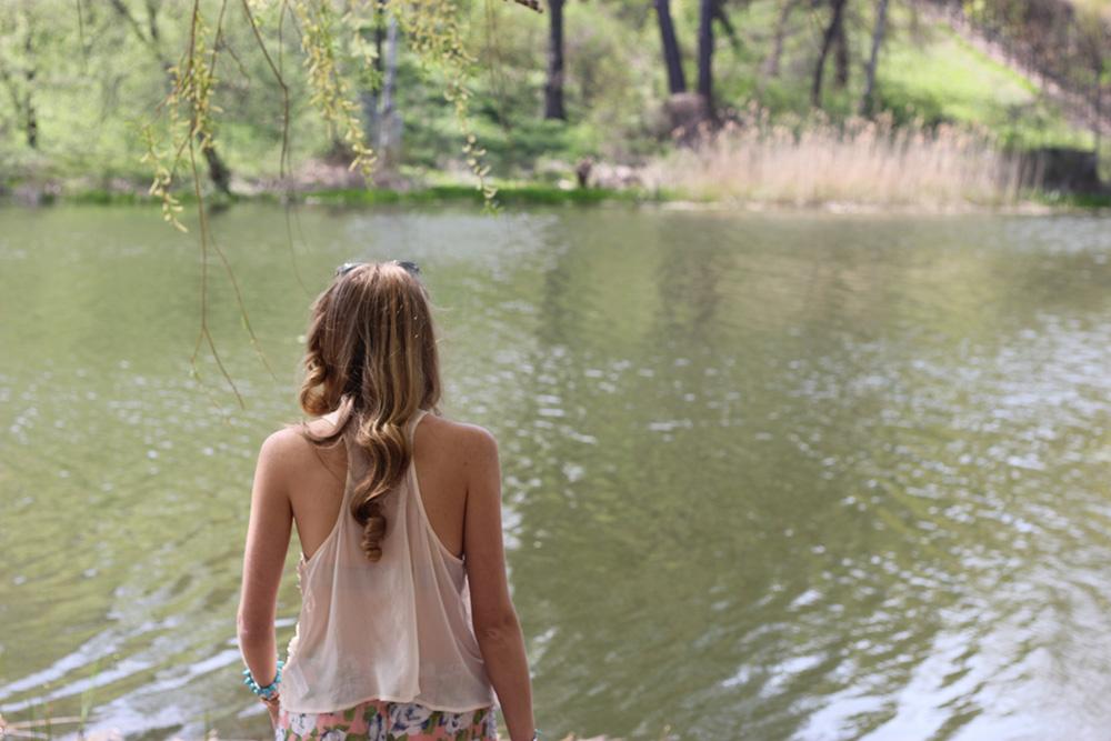 high park pond 2