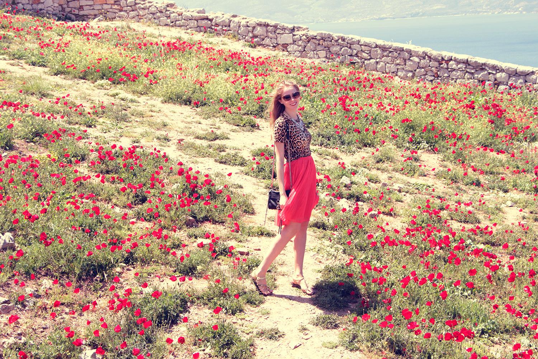 nafplio palamidi poppies