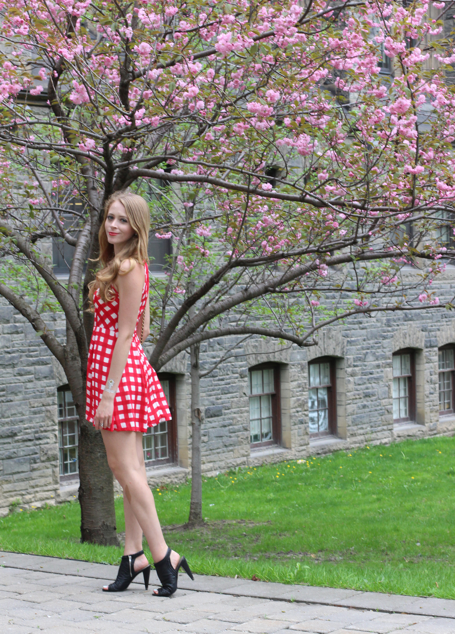 red gingham dress design lab