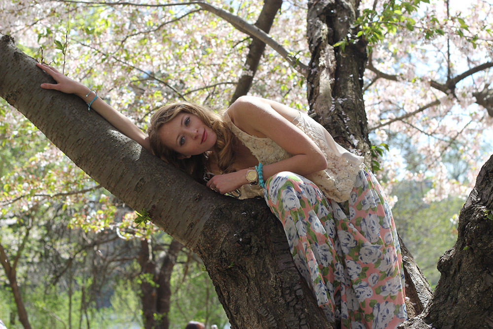 taking a nap in a tree